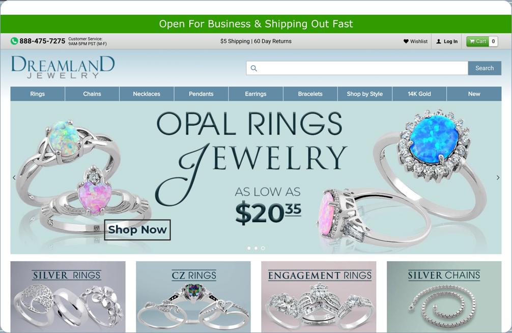 Case Study - Dreamland Jewelry